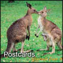Postcards with fine art photography from around Australia
