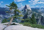 Half dome - USA L404 (sizes: 400x600; 600x900; 900x1350mm)