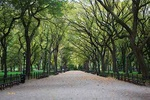 Central Park, NYC - USA L427 (sizes: 400x600; 600x900; 900x1350mm)