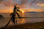 Lahaina sunset - USA L432 (sizes: 400x600; 600x900; 900x1350mm)