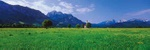 Foot of the Alps - Germany P243 (sizes: 400x1200; 500x1500; 600x1800mm)