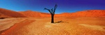 Sossusvlei - Namibia P523 (sizes: 400x1200; 500x1500; 600x1800mm)